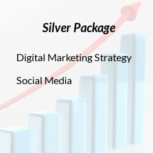 Agence Virtuelle Silver Package